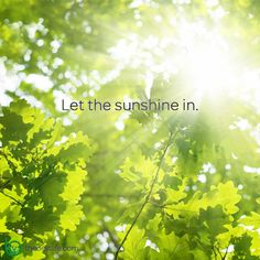Have a sunshine day!