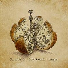 Clockwork Orange by Eric Fan