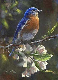 blue bird paintings  | Bluebird - Bluebird by Laura Mark-Finberg