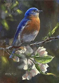 blue bird paintings  | Bluebird - Bluebird by Laura Mark-Finberg