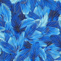 Morning Glory - Bluebird Feathers - Sapphire Blue/Gold