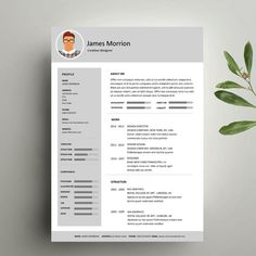 Articoli simili a Template Curriculum vitae Cover letter Word su Etsy It Cv, Cv Cover Letter, Curriculum, Cv Ideas, Templates, Lettering, Wall Street, Words, Infographics