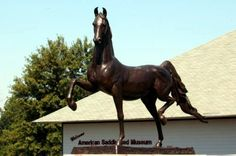 Supreme Sultan Statue sculpted by Patricia Crane outside the American Saddlebred Museum in Kentucky Horse Park- and my horse's grandfather All The Pretty Horses, Beautiful Horses, Kentucky Horse Park, Derby Horse, American Saddlebred, Horse Stables, Horse Sculpture, Horse Breeds, Horse Art