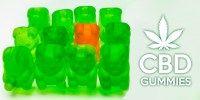 Enjoy guilt-free, indulging organic CBD gummy bears that provide great relief from joint pain, seizures, anxiety, cancer and many other illnesses. Visit the link to have a look on Top 3 CBD Gummies For Sale Online In USA. Cdb Oil, Body Of Evidence, Endocannabinoid System, Cbd Oil For Sale, Edibles Online, Deal With Anxiety, Gummy Bears, Cancer Treatment