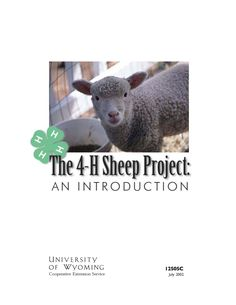The 4-H sheep project is an exciting and educational opportunity for 4-H members. There are three main types of sheep projects: (1) wool production, (2) breeding sheep, and (3) market lambs.� Click image to read more.
