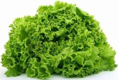 Varieties of lettuce - Iceberg, butter head, leaf, and romaine. Which type of lettuce is the best for us. How prepare lettuce. Types of lettuce Hydroponic Vegetables, Hydroponic Plants, Hydroponics, Hydroponic Solution, Hydroponic Tomatoes, Hydroponic Lettuce, Growing Vegetables, Green Lettuce, Brussels Sprouts