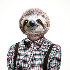 Do you feel a little Slothman? #animals #style #guys #cute #photooftheday #cool #tshirt