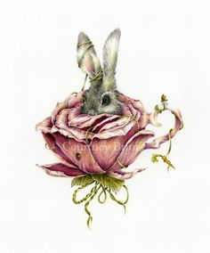 Rose Rabbit by Courtney Brims a self-taught Australian artist. (colour pencil on paper)