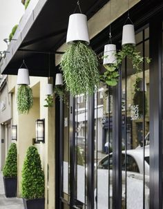 Boskke at Daphne's Design District Restaurant Exterior, Bath And Beyond Coupon, Healthy Snacks For Diabetics, Chelsea Flower Show, Indoor Garden, Container Gardening, Small Spaces, Bali, Entrance