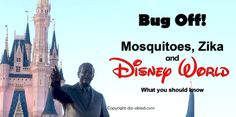 By Rebecca Joy (August 31, 2016) Are youheading to Disney World, but…
