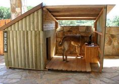 Now that's a doghouse!