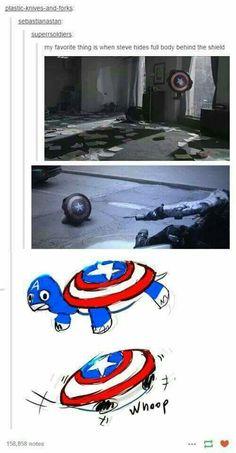 Captain America Turtle!
