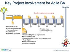 The vital role of the Agile Business Analyst