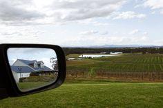 Views from Audrey Wilkinson Vineyard. Mount View, Hunter Valley, NSW