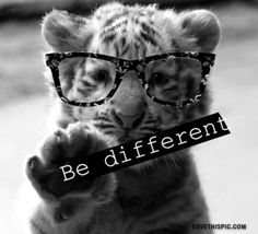 be different cute animals quote