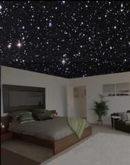 I totally want one in my future bedroom!  When the lights are on, or in daylight, it looks like a normal ceiling, but at night, their special paint shows an accurate night sky!