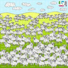 zoekspel_schapen-1024x1024.jpg (1024×1024)