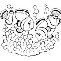 Worksheet. fish coloring pages to print for adults  Printable FishChannel