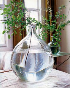 vase and green sprigs~fresh! Bottles And Jars, Glass Bottles, Bulb Vase, Modern Flower Arrangements, Branch Decor, Glass Jug, Vase Fillers, Jolie Photo, Glass Containers