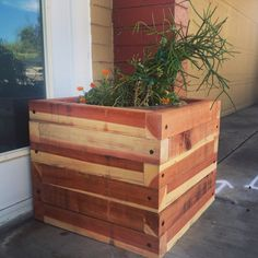 We just built this planter out of redwood 3x4's to conceal a potted plant we have in front of our workshop