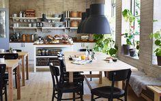 Mesas de refeição em bétula maciça, bancos em bétula e cadeiras pretas