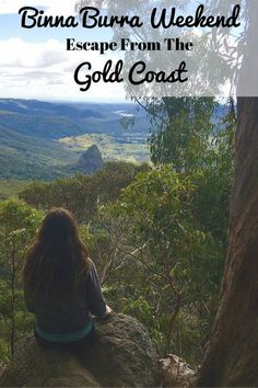Binna Burra Weekend: Escape From The Gold Coast - Migrating Miss Gold Coast Australia, Travel Articles, Travel Info, Travel Ideas, Travel Tips, Airlie Beach, Weekends Away, Ultimate Travel, Amazing Destinations