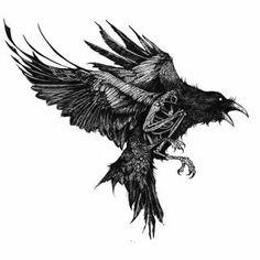 Grey Ink Tattoos, Dope Tattoos, Black And Grey Tattoos, Body Art Tattoos, Sleeve Tattoos, Crow Tattoos, Phoenix Tattoos, Hand Tattoos, Norse Tattoo
