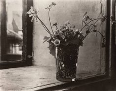 Josef Sudek (1896–1976) – Flowers, still life. 1950's