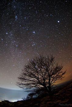 If the stars were mine by FrosinaIlievska.deviantart.com