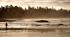 Tofino is a family-friendly, beach-combing paradise destination for winter or summer travel. Discover the wild west coast and Tofino with kids. Great Places, Places To See, Tofino Bc, Beaches In The World, Vancouver Island, Summer Travel, British Columbia, West Coast, Paradise