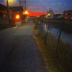 shinjimitani's photo on Instagram