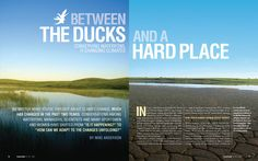 Text layout on the bottom right page, lines in between the columns     Opening two-page magazine spread for an article on the challenges waterfowl may face with shifting climate patterns.    Headline typeface is Helvetica Bold Condensed.    topdesignmag.com