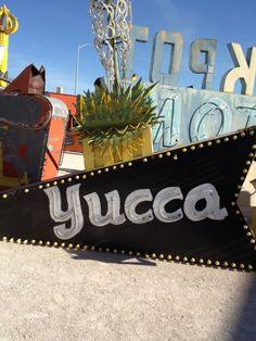 Yucca sign