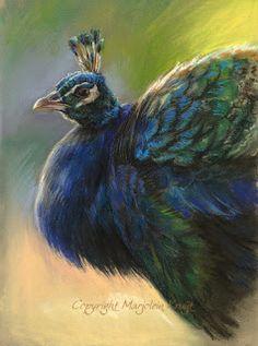 Blog - Marjolein Kruijt Animal Artist / dieren kunstenares: vogelkunst (bird art)