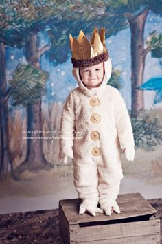 Where the Wild Things Are backdrop for themed birthday party.  Already have the halloween costumes from Pottery Barn.  Cute!