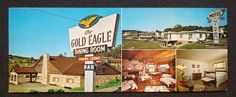 1960s XL Hilton Motel Gold Eagle Dining Brookville PA Jefferson Co Postcard | eBay