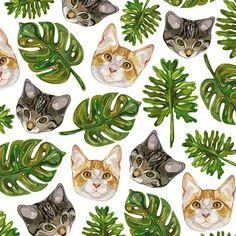 Patterns - Laura Manfre