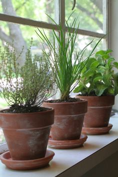 Super simple tutorial to create aged terra cotta pots using only 2 ingredients: powdered lime from the garden center and a spray can of polyurethane.