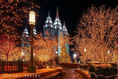 "City *** Lights ***###**Trees ***""""""# on We Heart It"