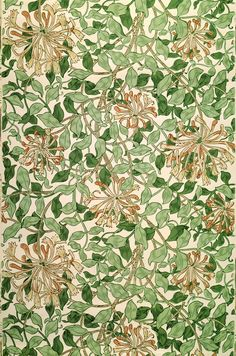 """Honeysuckle"", Fabric & Wallpaper Design by William Morris English Textile Designer, Poet, Novelist & Translator . William Morris Wallpaper, William Morris Art, Morris Wallpapers, Wallpaper Wallpapers, Nature Wallpaper, Print Wallpaper, Trendy Wallpaper, Pattern Wallpaper, Liberty Wallpaper"