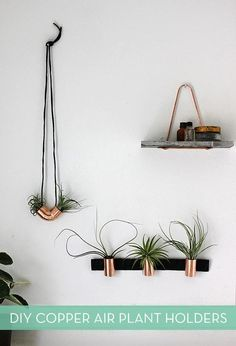 It: DIY Minimalist Copper Air Plant Holders Easy to make DIY copper air plant holders display your new spring plants in style.Easy to make DIY copper air plant holders display your new spring plants in style. Air Plants, Indoor Plants, Indoor Herbs, Indoor Gardening, Diy Wanddekorationen, Diy Crafts, Easy Diy, Mini Terrarium, Terrariums