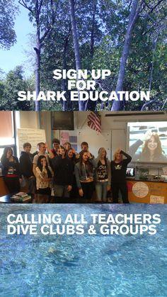 Skype in the Classroom Shark Activities, Educational Activities, Sharks, Conservation, Diving, Presentation, Teacher, Classroom, Suit