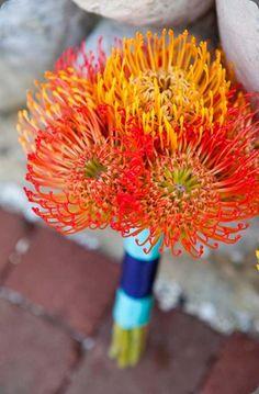 Orange pincushion protea bouquet via    beautiful blooms events