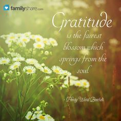 """Gratitude is the fairest blossom which springs from the soul."" - Henry Ward Beecher"