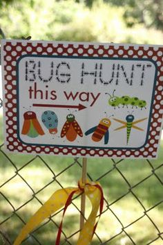 "Embellish: {real party} My Little ""Bug's"" First Birthday Party!    This looks like a cute idea. She hid plastics bugs like an Easter Egg Hunt."