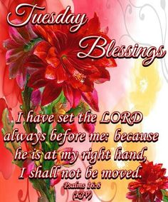 Wednesday Good Morning Blessings Quotes If you are looking for Wednesday good morning blessings quotes you've come to the right place. We have collect images about Wednesday good morning ble. Happy Tuesday Morning, Happy Tuesday Quotes, Blessed Wednesday, Sunday, Happy Friday, Monday Blessings, Morning Blessings, Morning Prayers, Good Morning Good Night