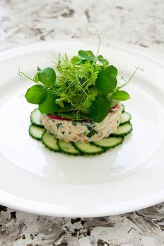 Crab Tian, Cucumber & Wasabi, Avocado Puree - Temptation For Food - Appetizer Recipes Seafood Recipes, Gourmet Recipes, Appetizer Recipes, Cooking Recipes, Healthy Recipes, Seafood Appetizers, Gourmet Foods, Food Plating Techniques, Food Decoration