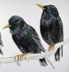 Gillian Bates, Starlings (detail)