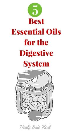 Best Essential Oils for the Digestive System - Healy Eats Real  Essential oils like peppermint and more are great for digestion!