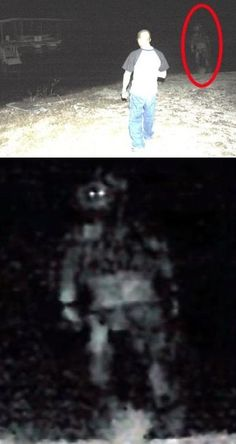 glowing white eyes in night, monster photo, I'm always skeptical of these kinds of pics. Ghost Images, Ghost Pictures, Creepy Images, Aliens And Ufos, Ancient Aliens, Tornados, Ghost Hauntings, Pseudo Science, Paranormal Photos
